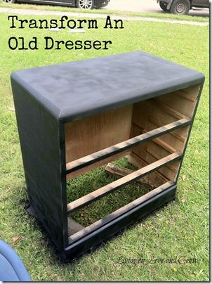 DIY zebra print dresser