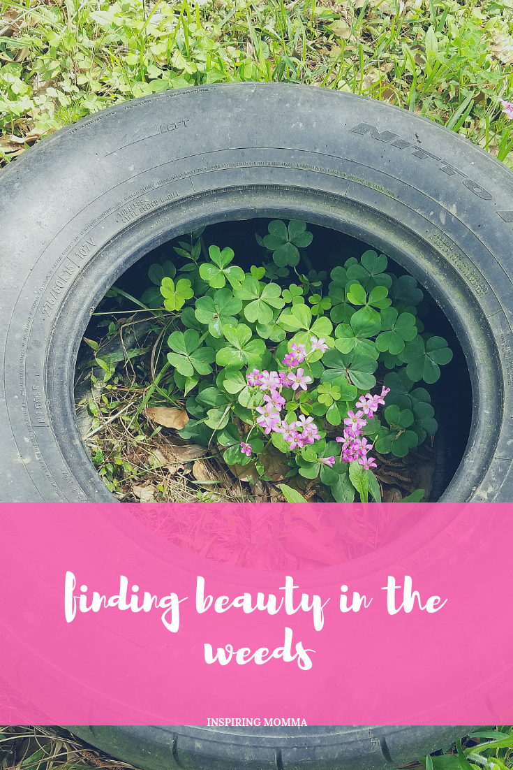 Weeds are annoying, right! An inconvenience. Not supposed to be there. They come from out of nowhere.